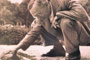 """""""La farfalla nel vino"""": una poesia di Hermann Hesse"""