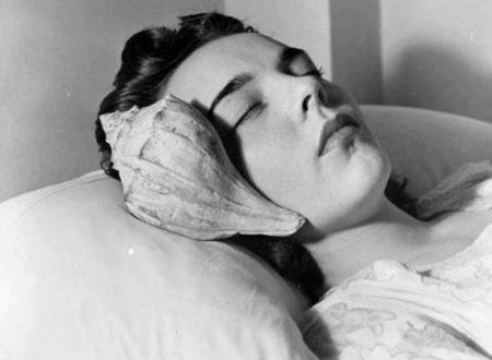 """""""Mi hanno portato una conchiglia"""": una poesia di Federico García Lorca"""