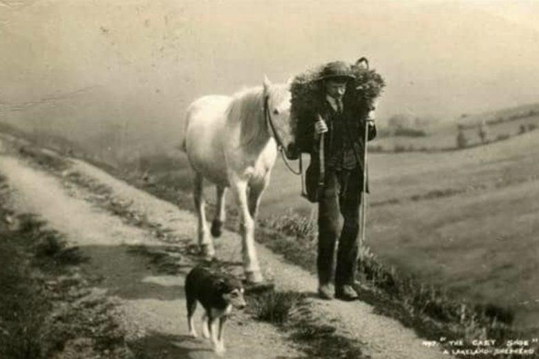 """""""C'erano un uomo, il suo cavallo e il suo cane"""": il meraviglioso brano di Paulo Coelho"""